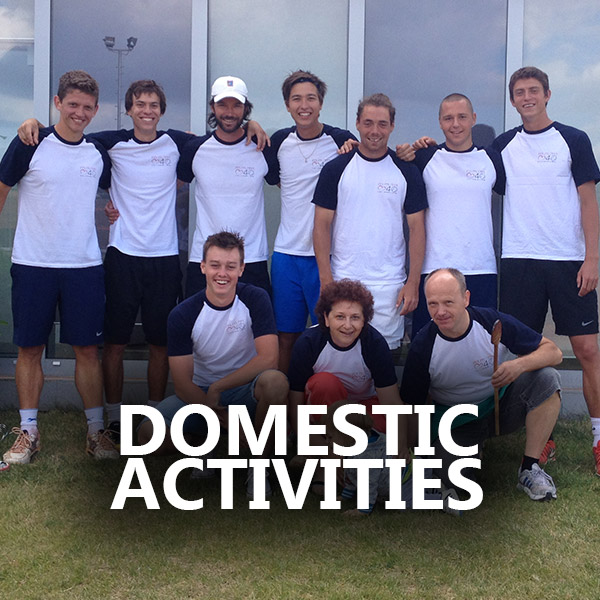 DOMESTIC-ACTIVITES