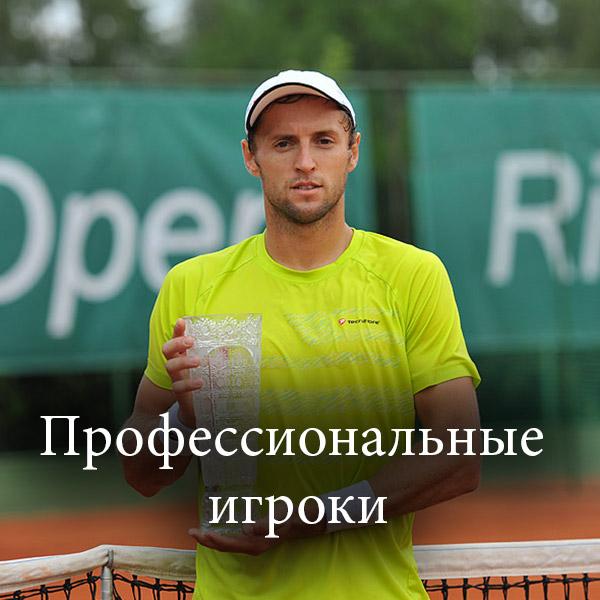 profesionalny-hraci_Профессиональные-игроки